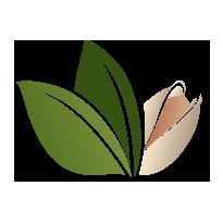 Niter – Tienda de Alimentos Naturales